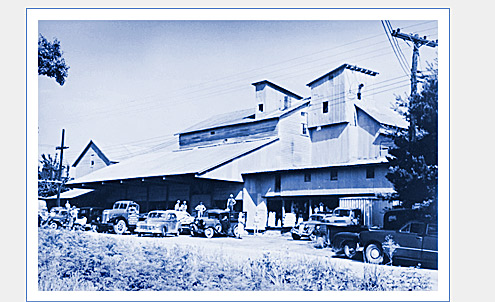 Lewisville Roller Mills in the Late 1940s