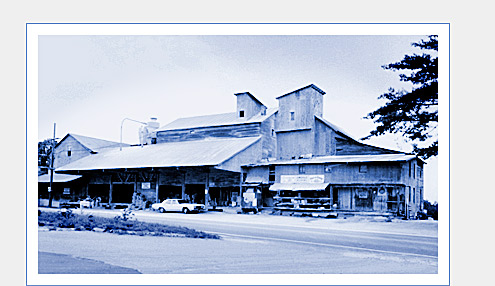 Lewisville Roller Mills in the 1970s