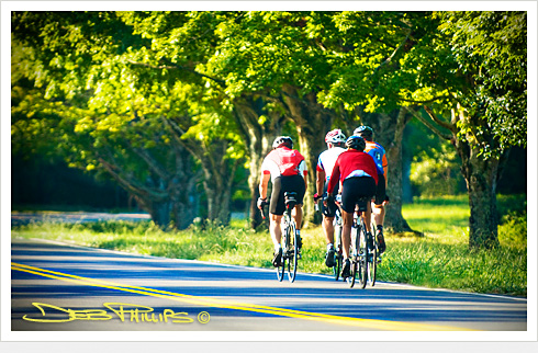 Bikers on high-end bikes are seen enjoying a popular bike route down Conrad Road in Lewisville, North Carolina (Forsyth County). Deb Phillips, photographer.