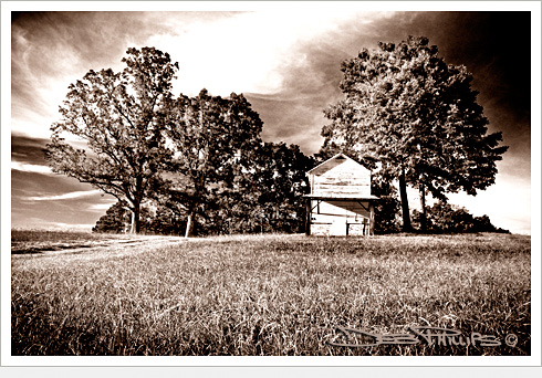 Old barn in field in Lewisville, North Carolina (Forsyth County) - Deb Phillips, photographer.