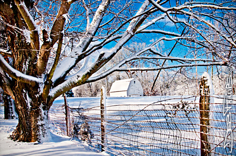 Snow-covered pasture and barn on Conrad Road in Lewisville, North Carolina (Forsyth County). Deb Phillips, photographer.
