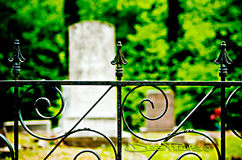 A wrought-iron fence lines a portion of the Williams Family Graveyard at historic Panther Creek Plantation in Lewisville, North Carolina (Forsyth County). Deb Phillips, photographer.