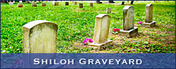 The Old Cemetery at Shiloh Lutheran Church in Lewisville, NC (Forsyth County). Photography by Deb Phillips.